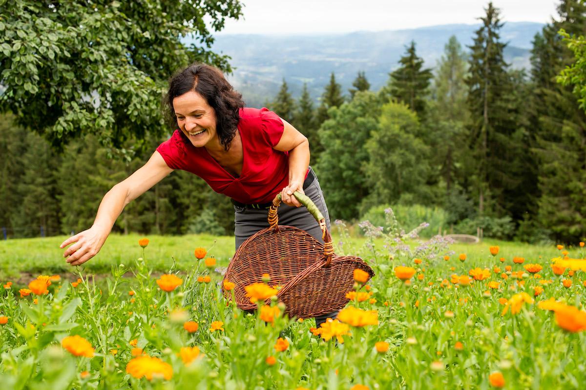 Beate beim Pflücken von Ringelblumen